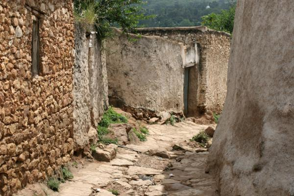 Narrow street in Harar | Harar | Ethiopia