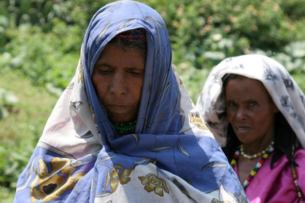 Old Koremi women in their colourful dresses | Koremi | Ethiopia