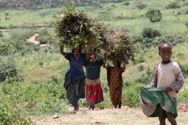 Women in the landscape of Koremi | Koremi | Etiopia