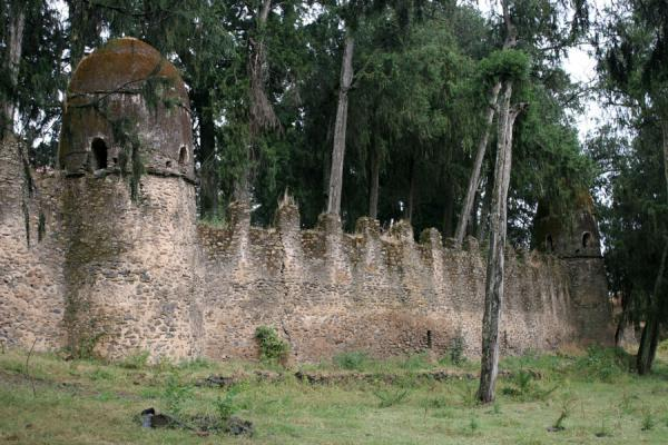 Defensive wall of the Kuskuam palace complex | Kuskuam | Ethiopia