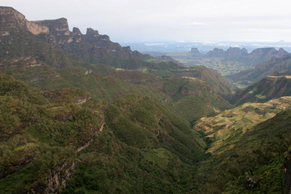 Looking north from the escarpment near Chennek Camp | Simien Mountains | Ethiopia
