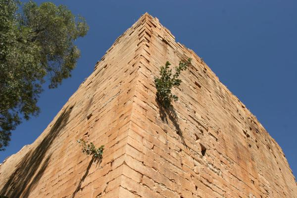 Corner of the ancient temple of Yeha | Yeha | Ethiopia