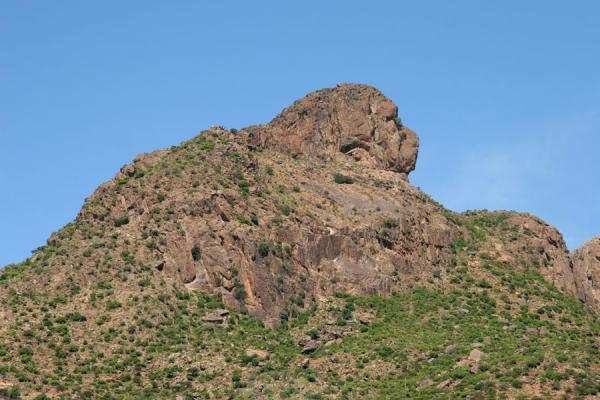 Head of a lion in the rocks above Yeha | Yeha | Ethiopia