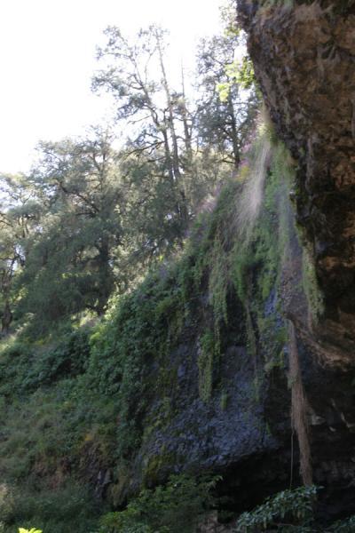 Delicate waterfall showering down Yemrehanna Kristos | Yemrehanna Kristos church | Ethiopia