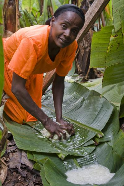 Photo de Local woman dressed in orange, preparing false bananaYirgalem - l'Ethiopie