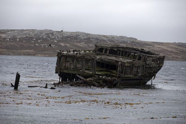 Foto de Wreck of the Jhelum on the shore of Stanley - Islas Malvinas - América