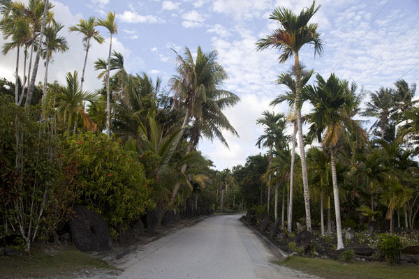 Picture of Balabat Stone Money Bank (Federated States of Micronesia): Stone money resting against palm trees on a road between Colonia and Balabat