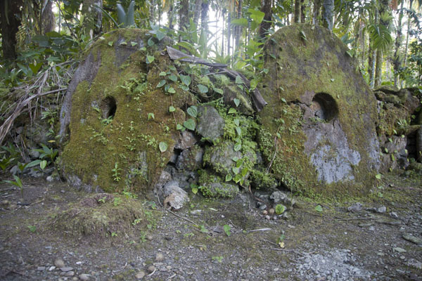 Picture of Okeu stone money bank (Federated States of Micronesia): Moss-covered stone money disks