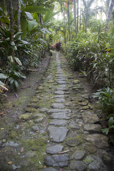 Picture of Okeu stone money bank (Federated States of Micronesia): Stone path to Okeu