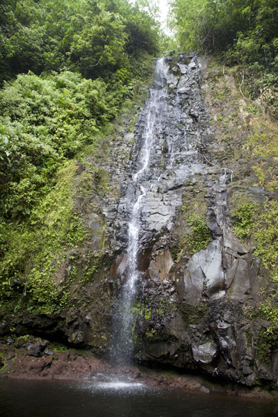 Picture of Pohnpei waterfalls (Federated States of Micronesia): The delicate Sahwartik falls