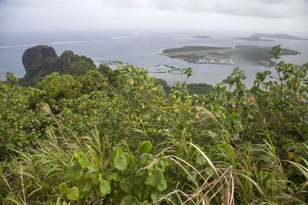 View from the top of Sokehs mountain with Sokehs rock and airport in the background | Sokehs ridge | Federated States of Micronesia