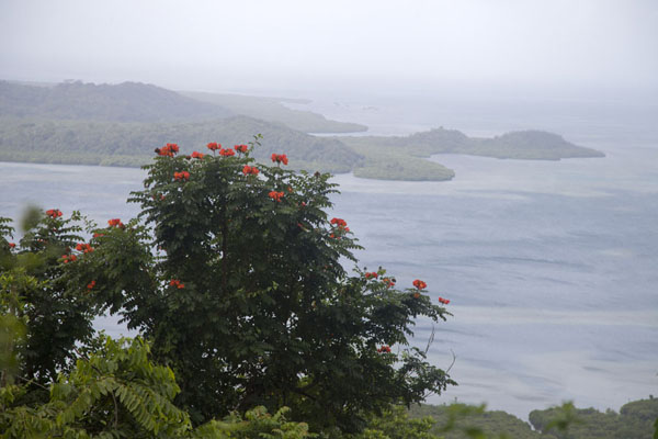 Picture of View from near the top of Sokehs ridge towards the westSokehs ridge - Federated States of Micronesia