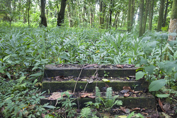 Picture of Stairs once leading up the barracks on top of Sokehs ridgeSokehs ridge - Federated States of Micronesia