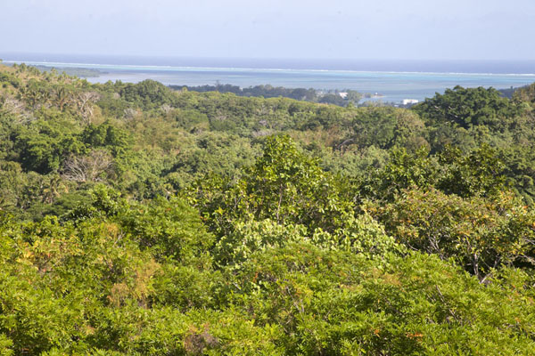 Foto van View towards the east from the top of the Tamilyog Trail - Federale Staten van Micronesia - Oceanië