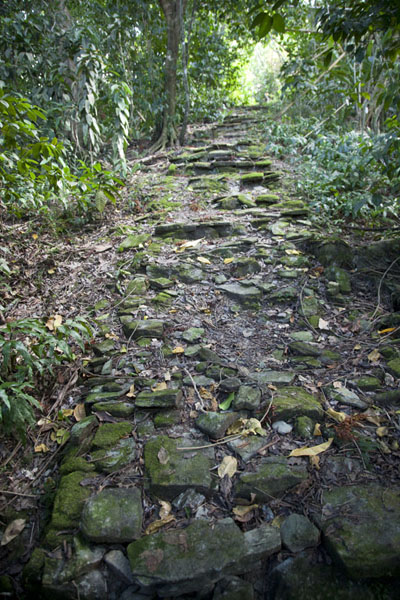 Foto van Stone path part of the Tamilyog Trail - Federale Staten van Micronesia - Oceanië