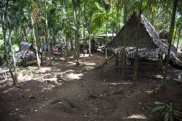 Picture of The village of Tamil consists of traditional housesTamil - Federated States of Micronesia