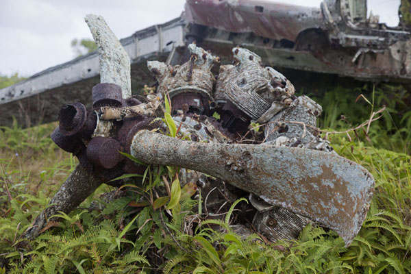 Foto van Micronesië (Japanese Zero with propellor blades lying in a field near the old airport)