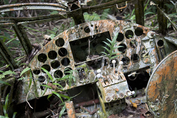 Foto di Micronesia (Cockpit of a Japanese fighter plane lying in the forest near the old airport)