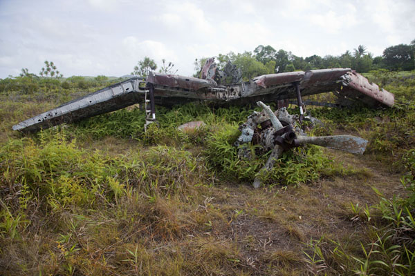 Destroyed Japanese Zero lying in a field near the old airport | Yap Second World War wrecks | Federated States of Micronesia