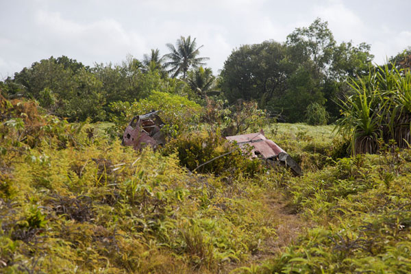 Field with two Japanese Zeroes and anti-aircraft guns near the old airport of Yap | Yap Second World War wrecks | Federated States of Micronesia