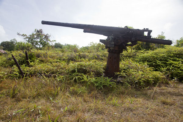 Picture of Anti-aircraft gun near the old airport of Yap