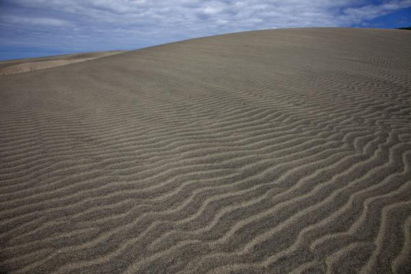 Foto van Fiji (Wind-shaped sand forms on top of the tallest sand dune of Sigatoka)