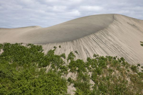 Foto van Sand dune partly covered with vegetationSigatoka zandduinen - Fiji