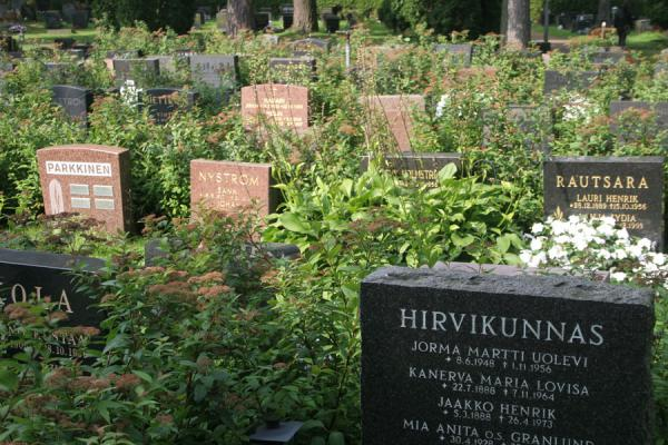 Foto de Close-up of some tombs at Hietaniemi CemeteryCementerio Hietaniemi - Finlandia