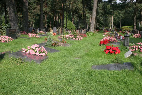 Tombs blending in with the natural surroundings | Hietaniemi Cemetery | Finland