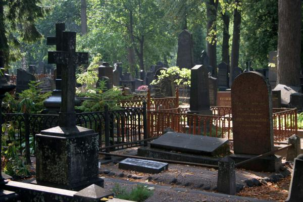 Picture of Tombs under trees at Hietaniemi Cemetery - Finland - Europe