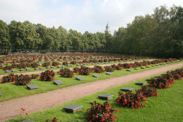 Picture of Hietaniemi Cemetery: tombs for fallen soldiers ...