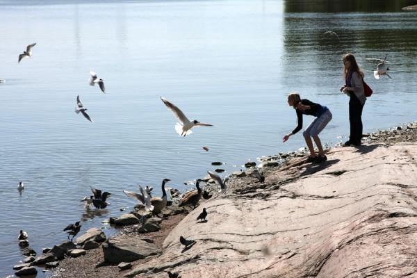 芬兰 (Finnish girls feeding seagulls on Seurasaari island)