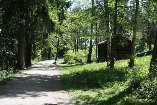 Photo de Wooden house and forest on Seurasaari - la Finlande - Europe