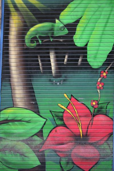 Floral decoration on door of shop in Lyon | Lyon street art | France