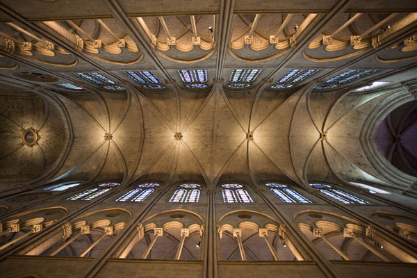 Photo de la France (Looking up at the ceiling of the Notre Dame cathedral)
