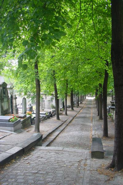Another lane in the cemetery | Père Lachaise Cemetery | France