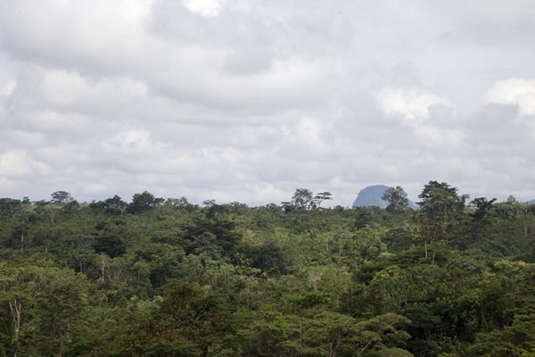 Mountain poking out of the tropical forest halfway to Libreville | Bitam to Libreville | 加彭