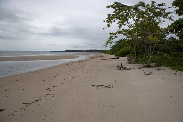 The white beach of Cap Esterias | Cap Esterias | Gabon