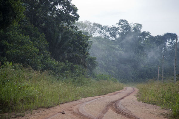 The muddy road from Franceville to Kessala | Kessala elephant hike | 加彭