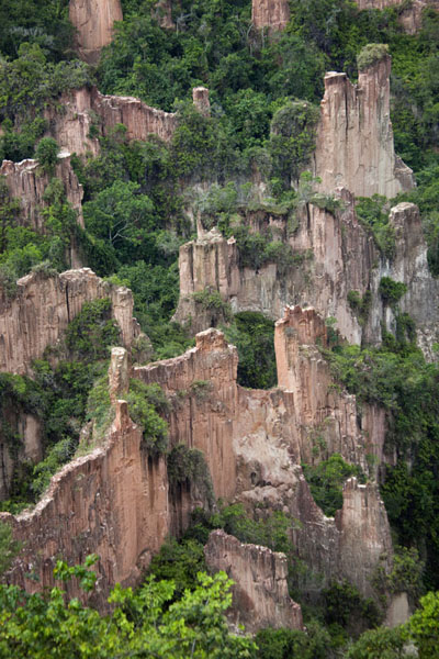 Pinnacles and trees define the interior of the canyon | Léconi canyon | Gabon