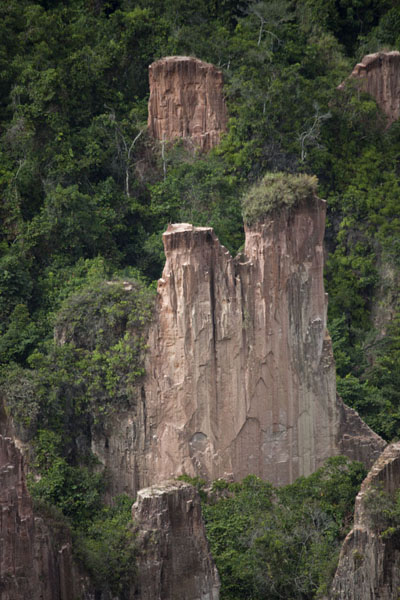 Close-up of pinnacle with bushes on top in the canyon | Léconi canyon | Gabon
