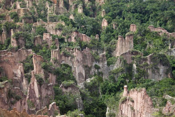 Close-up of the pinnacles in the canyon of Léconi | Léconi canyon | Gabon