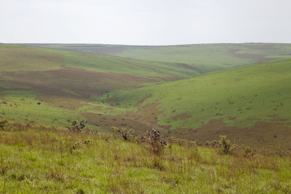 Foto di Rolling hills near the canyon of LéconiLéconi - Gabon