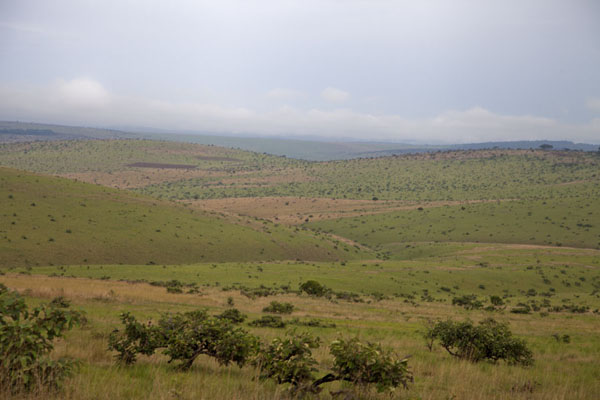 Picture of Landscape with wide views between Léconi and the canyonLéconi - Gabon