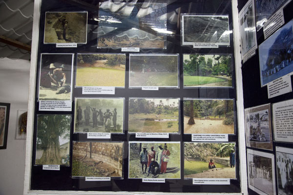 Foto di Section of the museum on the history of the crocodile pool - Gambia