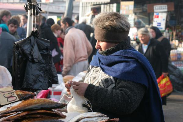 Picture of Georgian People (Georgia): Knitting woman at a street market in Tbilisi