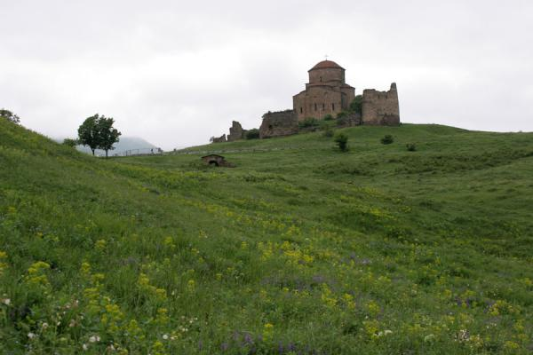 Picture of Jvari Church on top of green hill with flowers