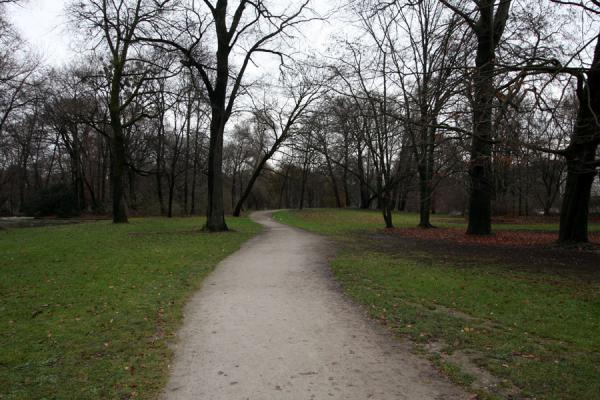 Photo de Path leading through the Englischer GartenMunich - l'Allemagne