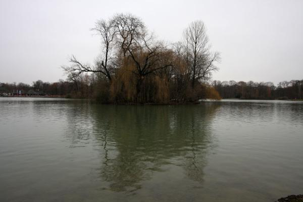 Kleinhesseloher See and one of the small islands | Englischer Garten | Duitsland