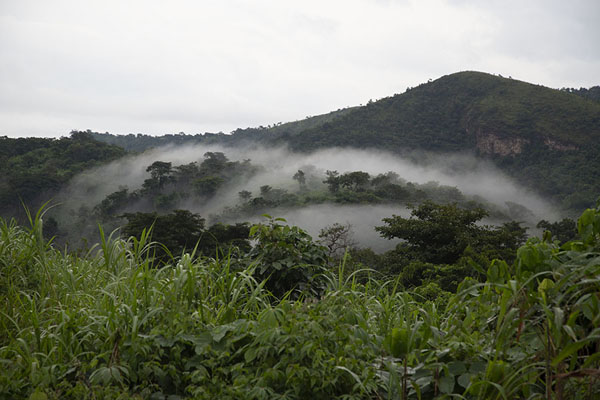 Foto van Avatime hills with its feet and forest covered in clouds - Ghana - Afrika
